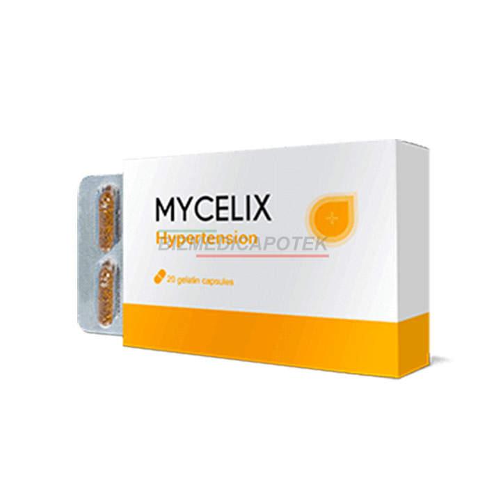 Mycelix